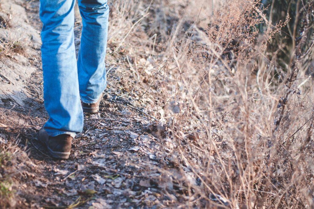 walks near bristol