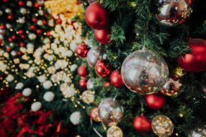 where to buy christmas trees in bristol