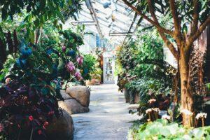 best garden centres